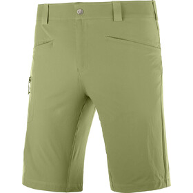 Salomon Wayfarer Shorts Men, martini olive